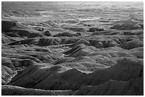 Buttes and grassy areas in Badlands Wilderness. Badlands National Park, South Dakota, USA. (black and white)