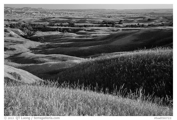Grassy hills in early summer, Badlands Wilderness. Badlands National Park (black and white)