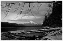 Shore of lake McDonald in winter. Glacier National Park, Montana, USA. (black and white)