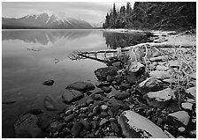 Snowy shoreline of Lake Mc Donald in winter. Glacier National Park ( black and white)