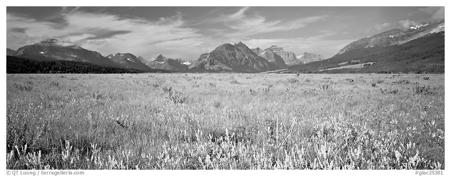 Prairie and mountains. Glacier National Park (black and white)