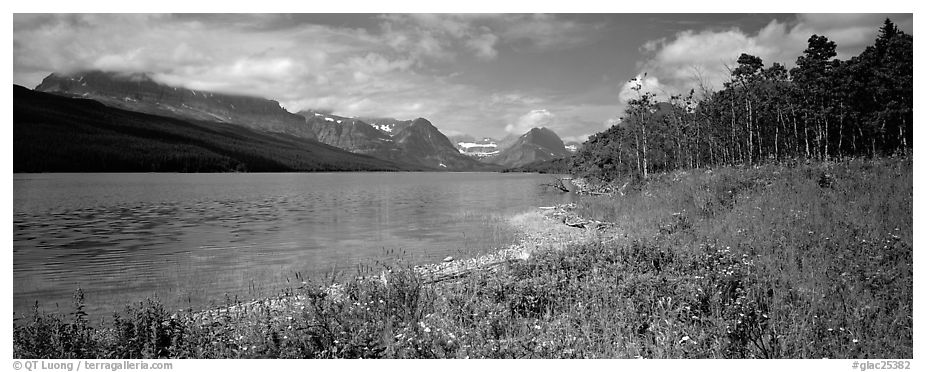 Mountain lake with wildflowers on shore. Glacier National Park (black and white)