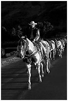 Man leading horse pack, sunrise. Glacier National Park, Montana, USA. (black and white)