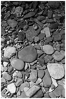 Colorful pebbles and shadow. Glacier National Park, Montana, USA. (black and white)