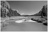 Stream at the head of Josephine Lake. Glacier National Park ( black and white)