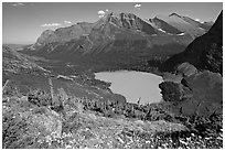 Alpine wildflowers, Grinnell Lake, and Allen Mountain. Glacier National Park, Montana, USA. (black and white)