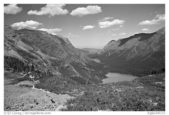 Many Glacier Valley with Grinnell Lake and Josephine Lake. Glacier National Park (black and white)