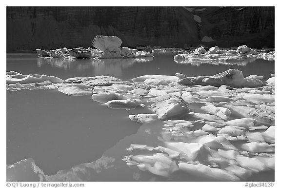 Icebergs and reflections in Upper Grinnell Lake. Glacier National Park (black and white)