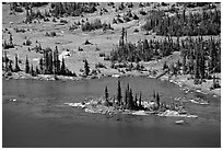 Islet on Hidden Lake. Glacier National Park, Montana, USA. (black and white)