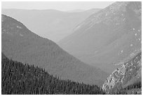 Forested Ridges seen from Hidden Lake Pass. Glacier National Park ( black and white)