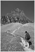 Backpacker and peak near Logan Pass. Glacier National Park ( black and white)