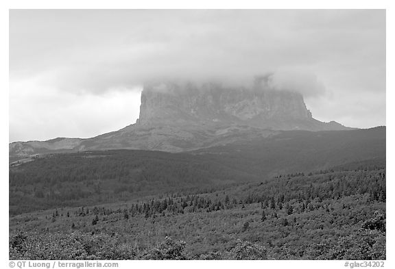 Chief Mountain, with top in the clouds. Glacier National Park (black and white)