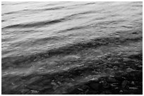 Reflection, ripples, and pebbles, Two Medicine Lake. Glacier National Park ( black and white)