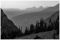 Sunset from Highline trail. Glacier National Park ( black and white)