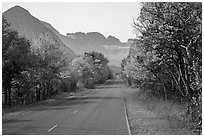 Road in autumn, Many Glacier. Glacier National Park ( black and white)