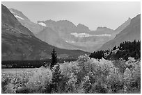 Forest in autum foliage and Garden Wall, Many Glacier. Glacier National Park ( black and white)