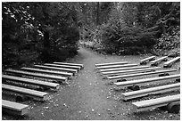 Amphitheater, Avalanche Creek Campground. Glacier National Park ( black and white)