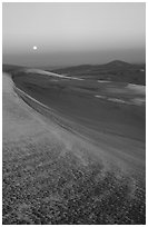 Dunes at dawn with snow and moon. Great Sand Dunes National Park and Preserve ( black and white)