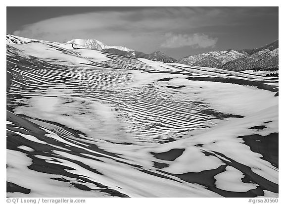 Melting snow on the dunes. Great Sand Dunes National Park and Preserve (black and white)