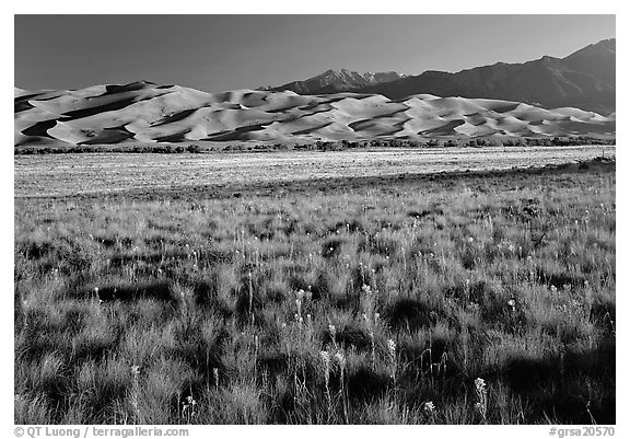 Grass prairie and dunes. Great Sand Dunes National Park (black and white)