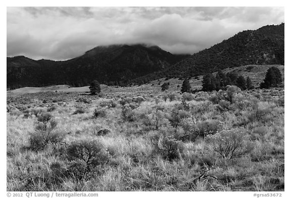 Grasslands below mountains. Great Sand Dunes National Park and Preserve (black and white)