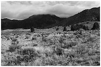 Grasslands below mountains. Great Sand Dunes National Park, Colorado, USA. (black and white)