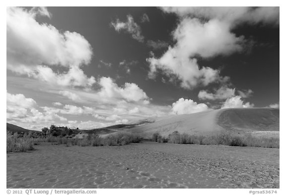 Dried Medano Creek and sand dunes in autumn. Great Sand Dunes National Park and Preserve (black and white)