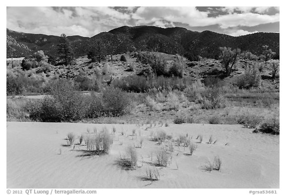 Dune sand, creek, grasslands, and mountains in autumn. Great Sand Dunes National Park and Preserve (black and white)