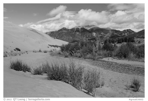Dry Medano Creek. Great Sand Dunes National Park and Preserve (black and white)