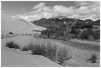 Dry Medano Creek. Great Sand Dunes National Park, Colorado, USA. (black and white)