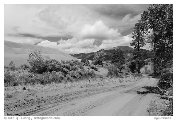 Medano Pass primitive road. Great Sand Dunes National Park and Preserve (black and white)