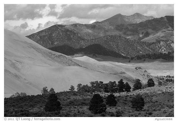 Sangre de Cristo range with bright patches of aspen above dunes. Great Sand Dunes National Park and Preserve (black and white)
