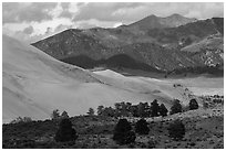 Sangre de Cristo range with bright patches of aspen above dunes. Great Sand Dunes National Park, Colorado, USA. (black and white)