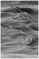 Dune field at dusk. Great Sand Dunes National Park, Colorado, USA. (black and white)