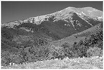 Sangre de Cristo Mountains near Medora Pass. Great Sand Dunes National Park, Colorado, USA. (black and white)
