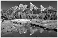 Grand Teton and fall colors reflected at Schwabacher landing. Grand Teton National Park, Wyoming, USA. (black and white)