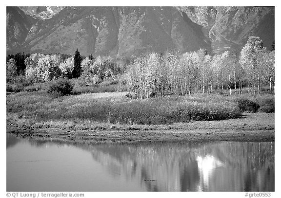 Autumn colors and reflections of Mt Moran in Oxbow bend. Grand Teton National Park (black and white)