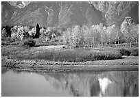 Autumn colors and reflections of Mt Moran in Oxbow bend. Grand Teton National Park, Wyoming, USA. (black and white)