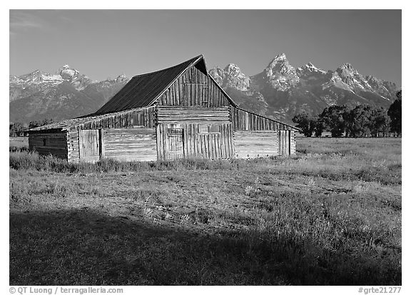 Moulton Barn and Teton range, morning. Grand Teton National Park (black and white)