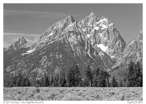 Cathedral group, morning. Grand Teton National Park (black and white)