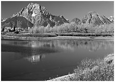 Mt Moran reflected in Oxbow bend in autumn. Grand Teton National Park ( black and white)