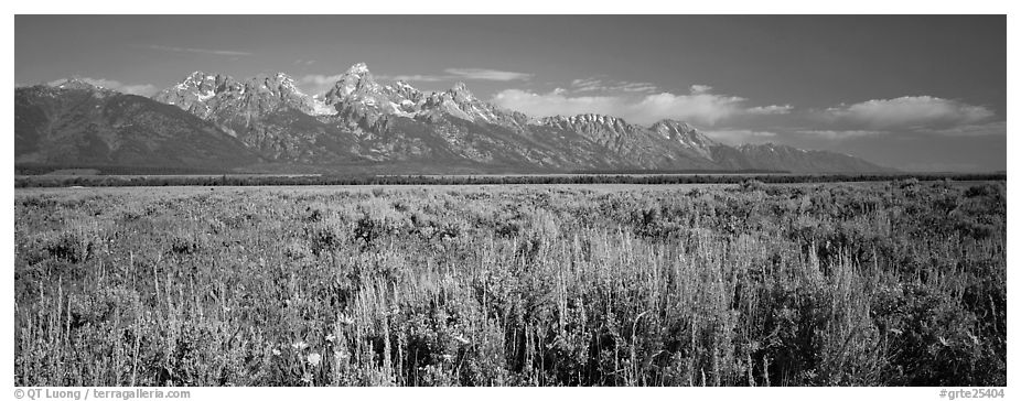 Sagebrush-covered flat and mountain range. Grand Teton National Park (black and white)