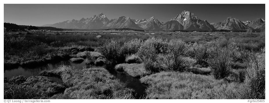 Wet meadows and mountains in the fall. Grand Teton National Park (black and white)