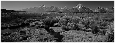 Wet meadows and mountains in the fall. Grand Teton National Park (Panoramic black and white)