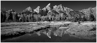 Mountains and fall colors reflected in pond, Schwabacher Landing. Grand Teton National Park (Panoramic black and white)