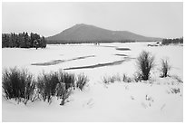 Oxbow Bend in winter. Grand Teton National Park ( black and white)