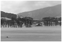 Moulton Homestead in the distance, winter. Grand Teton National Park, Wyoming, USA. (black and white)