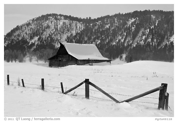 Fence and historic Moulton Barn in winter. Grand Teton National Park (black and white)