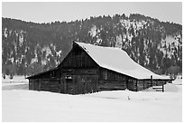 Thomas Alma and Lucille Moulton Homestead, winter. Grand Teton National Park, Wyoming, USA. (black and white)