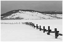 Fence, snowdrift and Ulh Hill. Grand Teton National Park ( black and white)